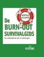 De burn-out survivalgids - Bertold Ulsamer (ISBN 9789088401282)