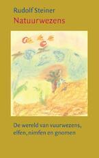 Natuurwezens - Rudolf Steiner (ISBN 9789060382530)