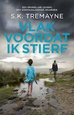 Vlak voordat ik stierf - S.K. Tremayne (ISBN 9789044635492)