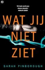 Wat jij niet ziet - Sarah Pinborough (ISBN 9789044350586)