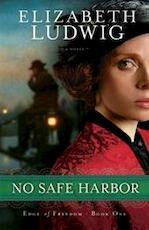No Safe Harbor - Elizabeth Ludwig (ISBN 9780764210396)