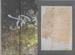 De bekeerlinge [Bibliofiele uitgave] - Stefan Hertmans