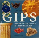 Gips - John Plowman, Marjan Faddegon-doets (ISBN 9789021324258)