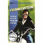 Frankenstein - Mary Wollstonecraft Shelley (ISBN 9781843443858)