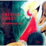 Arshile Gorky - Dore Ashton, Arshile Gorky, Michael Auping, Matthew Spender, Modern Art Museum Of Fort Worth, Albright-Knox Art Gallery, National Gallery Of Art (U.S.) (ISBN 0914782924)