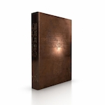CODEX - Gerti Bierenbroodspot (ISBN 9789491525803)