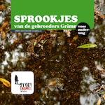 Sprookjes van de Gebroeders Grimm - Gebroeders Grimm (ISBN 9789461493309)