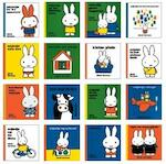 toptitels pakket 2013 - Dick Bruna