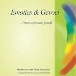 Emoties & Gevoel - Tessa Gottschal (ISBN 9789071878039)