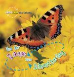 Von der Raupe zum Schmetterling - Camilla de la Bédoyère (ISBN 9789461754240)
