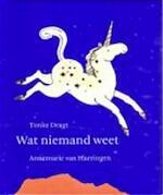 Wat niemand weet - Tonke Dragt, Annemarie Van Haeringen (ISBN 9789059650596)