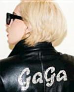 Lady Gaga - Terry Richardson (ISBN 9783442313136)