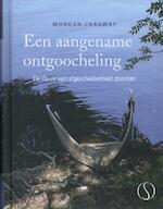 Een aangename ontgoocheling - Morgan Caraway (ISBN 9789491411021)