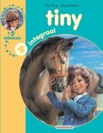 Tiny integraal 4