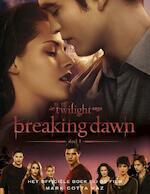 Breaking dawn - Stephenie Meyer (ISBN 9789000305131)