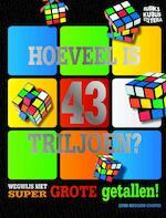 Grip op grote getallen - Lynn Huggins-Cooper (ISBN 9789461752826)