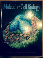 Mol.Cell.Bio. 2ed