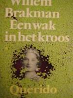 Een wak in het kroos - Willem Brakman (ISBN 9789021453781)