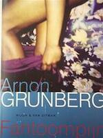 Fantoompijn - Arnon Grunberg (ISBN 9789038826998)
