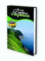 De grote ommekeer - Patrick Lagrou (ISBN 9789044816136)