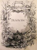 Voyage a Surinam, description des possessions Néerlandaises dans la Guyane - P.J. Benoit