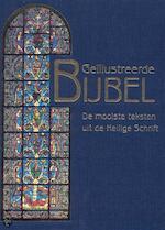 Geïllustreerde Bijbel - Lidy Nooij, Amp, Ansfried Scheifes (ISBN 9789064075841)