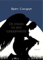 De engel in het gekkenhuis - Bjorn Cocquyt, Bjorn Cocquyt (ISBN 9789077490501)