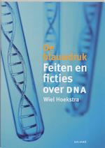 De blauwdruk - W. Hoekstra (ISBN 9789048506972)