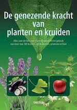 100 bijzondere remedies met kruiden en planten