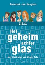Een geheim achter glas - Anneriek van Heugten (ISBN 9789044811223)