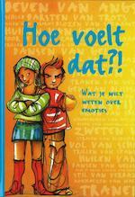 Hoe voelt dat?! - Marga van Zundert, Irene Herbers, Corine Schouten, Mirjam Vossen (ISBN 9789048708406)
