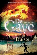Sprong in het duister - Bies van Ede (ISBN 9789048821754)
