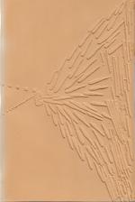 Enzo Cucchi : scultura 1982-1988 - Martin Schwander (ISBN 3525219048)