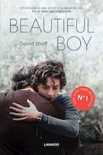 Beautiful Boy - David Sheff (ISBN 9789401458450)