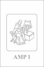 The science of the soul - Sander de Boer (ISBN 9789461660787)