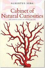 Cabinet of Natural Curiosities - Irmgard Müsch, Rainer Willman (ISBN 9783822847947)