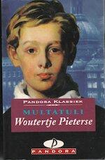 Woutertje Pieterse - Multatuli, Marijke Stapert-eggen (ISBN 9789025455842)