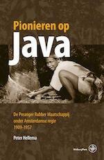 Pionieren op Java - Peter Hellema (ISBN 9789057309922)