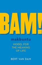 BAM! - Bert van Dam (ISBN 9789492179128)