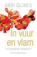 In vuur en vlam - Abbi Glines (ISBN 9789045212111)