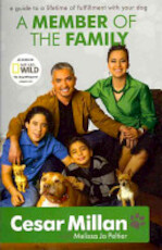 A Member of the Family - Cesar Millan, Melissa Jo Peltier (ISBN 9780340978566)