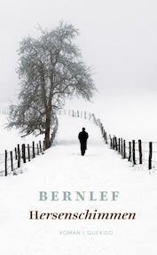 Hersenschimmen - Bernlef, J. Bernlef (ISBN 9789021440132)