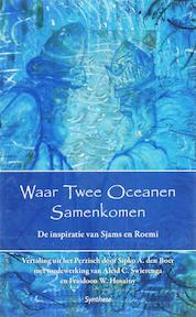 Waar twee oceanen samenkomen - Sipko A. den Boer (ISBN 9789062710195)