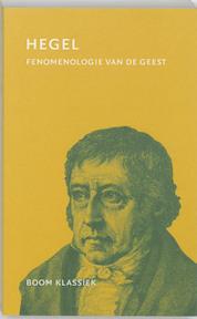 Fenomenologie van de geest - G.W.F. Hegel (ISBN 9789053527986)