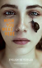 Wish you were here - Evelien de Vlieger (ISBN 9789045121147)