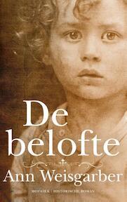 De belofte - Ann Weisgarber (ISBN 9789023994893)