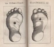De clavis dominicis liber - Cornelius Curtius