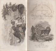 Le cabinet du jeune naturaliste, ou tableaux intéressans de l'histoire des animaux - Thomas Smith