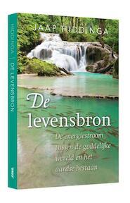 De levensbron - Jaap Hiddinga (ISBN 9789492500670)