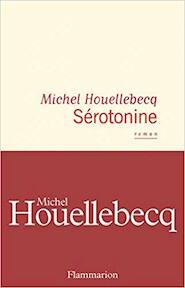 Nouvel roman - Michel Houellebecq (ISBN 9782081471757)